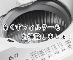 洗濯機 糸くずフィルター 掃除 カビ