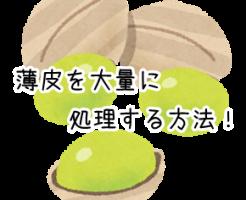 銀杏の画像